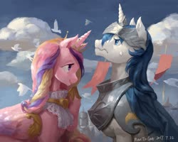 Size: 1920x1539 | Tagged: safe, artist:noraz, princess cadance, shining armor, alicorn, bird, pony, unicorn, armor, banner, cloud, crown, cute, female, helmet, jewelry, male, mare, pixiv, profile, regalia, royal guard armor, shiningcadance, shipping, sky, stallion, straight, sweat, sweatdrop