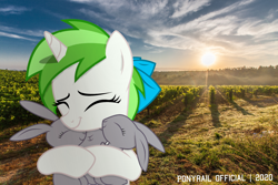 Size: 2200x1467 | Tagged: safe, artist:indonesiarailroadpht, oc, oc only, oc:minty root, pony, irl, photo, ponies in real life