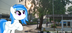 Size: 4032x1872 | Tagged: safe, artist:indonesiarailroadpht, oc, oc only, oc:winter white, pegasus, pony, irl, photo, ponies in real life