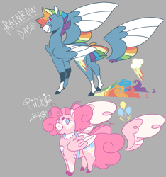 Size: 2437x2601 | Tagged: safe, artist:kingjunkie, pinkie pie, rainbow dash, pegasus, pony, leak, spoiler:g5, colored wings, duo, female, folded wings, g5, hooves, mare, multicolored wings, pegasus pinkie pie, pinkie pie (g5), race swap, rainbow dash (g5), rainbow wings, redesign, simple background, spread wings, tongue out, wings