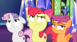 Size: 1631x886 | Tagged: safe, screencap, apple bloom, scootaloo, sweetie belle, pony, growing up is hard to do, spoiler:s09e22, apple bloom is not amused, cropped, cutie mark crusaders, floppy ears, scootaloo is not amused, sweetie belle is not amused, trio, unamused