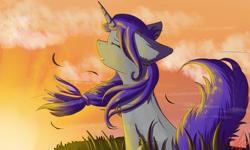 Size: 1280x769   Tagged: safe, artist:yuris, oc, oc only, oc:nightcoll bloom, pony, unicorn, solo, sunset