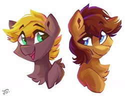 Size: 1395x1070 | Tagged: safe, artist:saxopi, oc, oc only, earth pony, pegasus, pony, duo, simple background