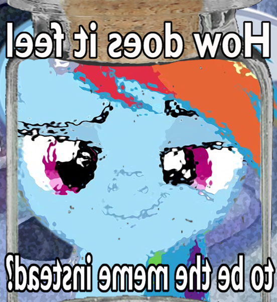 2318642 - safe, edit, rainbow dash, pegasus, caption, dank memes, glass  jar, image macro, implied cum jar, inverted text, looking at you, meme,  meta, smug, solo, text - Derpibooru