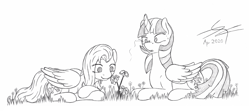 Size: 2088x926 | Tagged: safe, artist:parallel black, fluttershy, twilight sparkle, alicorn, butterfly, insect, ladybug, pegasus, pony, coccinellidaephobia, curved horn, duo, flower, folded wings, grass, horn, insect on nose, monochrome, outdoors, prone, sketch, traditional art, twilight sparkle (alicorn), wings