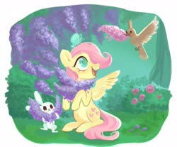 Size: 3018x2498 | Tagged: safe, artist:switchsugar, angel bunny, fluttershy, bird, butterfly, pegasus, pony, angelbetes, beak hold, bush, colored pupils, cute, female, filly, filly fluttershy, flower, high res, hoof hold, lavender, looking at something, looking up, open mouth, outdoors, rose bush, shyabetes, sitting, sitting on head, solo, spread wings, spring, wings, younger