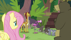 Size: 1920x1080 | Tagged: safe, screencap, angel bunny, clementine, fluttershy, harry, scout (flamingo), smoky, smoky jr., softpad, bear, bird, flamingo, giraffe, koala, pegasus, pony, raccoon, she talks to angel, asking for help, body swap, cloven hooves, crossed arms, displeased, eyes closed, female, folded wings, looking away, male, mare, mates, not fluttershy, rejection, sweet feather sanctuary