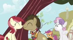 Size: 828x454 | Tagged: safe, artist:herfaithfulstudent, edit, edited screencap, screencap, doctor whooves, roseluck, scootaloo, sweetie belle, time turner, pegasus, pony, unicorn, clothes, doctorrose, female, male, nuzzling, scarf, shipping, straight