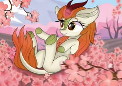 Size: 2560x1810 | Tagged: safe, artist:janelearts, autumn blaze, kirin, awwtumn blaze, cherry blossoms, cute, ear fluff, female, flower, flower blossom, glowing horn, horn, looking at something, on back, outdoors, reaching, sakura tree, smiling, solo, three quarter view