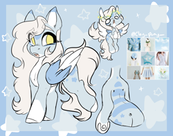 Size: 2730x2154 | Tagged: safe, artist:missclaypony, oc, pegasus, pony, female, mare, moodboard, reference sheet, solo, two toned wings, wings