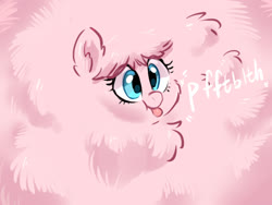 Size: 1600x1200 | Tagged: safe, artist:colorfulcolor233, oc, oc only, oc:fluffle puff, pony, cute, excessive fluff, female, flufflebetes, mare, maximum overfloof, ocbetes, pbbtt, raspberry, solo, tongue out