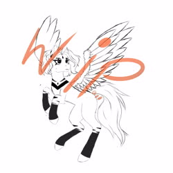 Size: 4000x4000 | Tagged: safe, oc, oc only, fly, insect, pegasus, pony, zebra, zebrasus, artist r.o.a.h., female, flying, oc estherspell, pegasus oc, sky, solo, spread wings, wings, wip, zebra oc