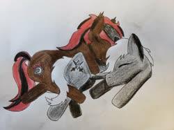 Size: 4032x3024   Tagged: safe, artist:marvelmoon, oc, oc only, oc:alex sinfalair, oc:scarlet dusk, bat pony, pegasus, cute, sleeping, traditional art