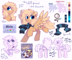 Size: 1800x1500   Tagged: safe, artist:mirtash, oc, oc only, oc:mirta whoowlms, pegasus, pony, clothes, reference sheet, scar, scarf, solo
