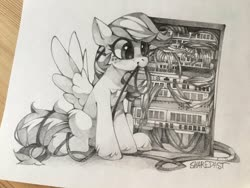 Size: 1920x1440 | Tagged: safe, artist:share dast, oc, oc only, oc:summer ray, pegasus, pony, solo