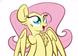 Size: 1920x1375 | Tagged: safe, artist:kimjoman, fluttershy, pegasus, pony, bust, chest fluff, female, mare, open mouth, portrait, simple background, smiling, solo, spread wings, three quarter view, white background, wings