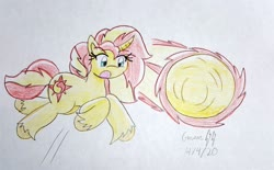 Size: 4008x2486 | Tagged: safe, artist:gmangamer25, sunset shimmer, pony, unicorn, ball, crossover, female, homing attack, jumping, mare, motion lines, rolling, shimmerball, sonic the hedgehog (series), spin dash, traditional art