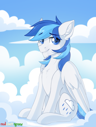 Size: 1454x1929   Tagged: safe, artist:redchetgreen, oc, oc:rainy, pegasus, pony, cloud, looking at you, male, sitting, solo, wings