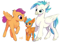 Size: 640x451 | Tagged: safe, artist:bokkitoki, scootaloo, terramar, classical hippogriff, hippogriff, hybrid, pegasus, chest fluff, colored hooves, ear fluff, ear piercing, earring, female, interspecies offspring, jewelry, looking at you, male, mare, offspring, older, older scootaloo, older terramar, parent:scootaloo, parent:terramar, parents:terraloo, piercing, shipping, simple background, straight, terraloo, unshorn fetlocks, white background
