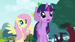 Size: 1920x1080 | Tagged: safe, screencap, fluttershy, spike, twilight sparkle, dragon, pegasus, pony, unicorn, friendship is magic, tree, unicorn twilight
