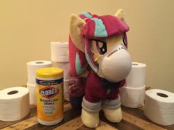 Size: 2048x1536   Tagged: safe, sour sweet, pegasus, pony, equestria girls, clothes, crystal prep academy uniform, equestria girls ponified, freckles, mask, photo, plushie, ponified, ponytail, school uniform, skirt, solo, toilet paper