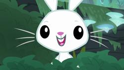 Size: 1920x1080 | Tagged: safe, screencap, angel bunny, fluttershy, she talks to angel