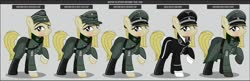 Size: 1600x517 | Tagged: safe, artist:brony-works, oc, earth pony, pony, clothes, female, mare, nazi germany, nazipone, schutzstaffel, solo, uniform, waffen-ss, world war ii