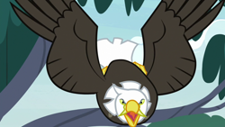 Size: 1920x1080 | Tagged: safe, screencap, bird, eagle, she talks to angel, solo