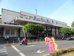 Size: 1140x856 | Tagged: safe, luster dawn, pony, irl, photo, ponies in real life, taiwan, zhongli