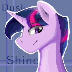 Size: 1024x1024 | Tagged: safe, artist:wimple, twilight sparkle, dusk shine, head, male, rule 63