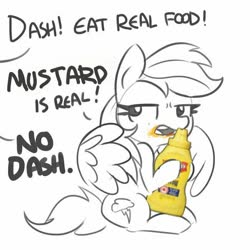 Size: 600x600 | Tagged: safe, artist:tjpones, rainbow dash, pegasus, pony, dialogue, food, mustard, offscreen character, sauce, simple background, white background