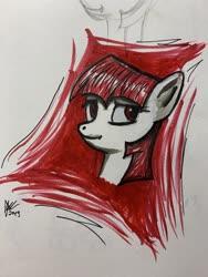Size: 4032x3024   Tagged: safe, twilight sparkle, pony, vampire, bust, female, portrait, solo
