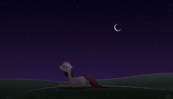 Size: 7000x4000   Tagged: safe, artist:kids-in-the-corner, artist:those kids in the corner, oc, oc:dried petals, earth pony, absurd resolution, female, field, looking up, mare, moon, night, sad, solo, stars