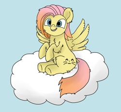 Size: 1903x1759 | Tagged: safe, artist:barpy, oc, oc only, oc:barpy, pegasus, pony, cloud, cute, excited, happy, looking at you, male, not fluttershy, raised hoof, simple background, sitting, smiling, solo, spread wings, wings