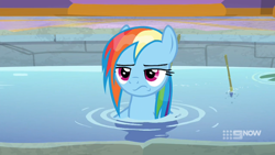 Size: 1920x1080 | Tagged: safe, screencap, rainbow dash, deep tissue memories, spoiler:deep tissue memories, spoiler:mlp friendship is forever, rainbow dash is not amused, unamused, wet mane