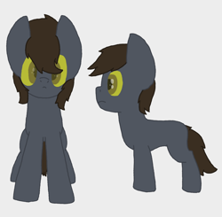 Size: 1438x1409 | Tagged: safe, artist:derpy_the_duck, oc, oc:davis, earth pony, ghost, ghost pony, reference sheet, solo