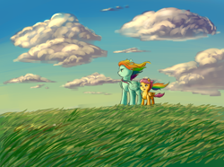 Size: 1720x1280 | Tagged: safe, artist:gloomydinosaur, rainbow dash, scootaloo, pegasus, pony, cloud, duo, female, filly, folded wings, grass, grass field, looking away, mare, outdoors, sky, standing, windswept mane, wings