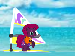 Size: 1440x1080 | Tagged: safe, artist:徐詩珮, fizzlepop berrytwist, tempest shadow, pony, unicorn, series:sprglitemplight diary, series:sprglitemplight life jacket days, series:springshadowdrops diary, series:springshadowdrops life jacket days, alternate universe, base used, clothes, cute, lifejacket, marshall (paw patrol), paw patrol, simple background, surfing, transparent background