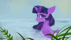 Size: 1920x1080 | Tagged: safe, artist:hierozaki, twilight sparkle, alicorn, pony, bathing, female, solo, twilight sparkle (alicorn)