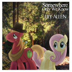 Size: 1000x1000 | Tagged: safe, artist:dashiesparkle, artist:misteraibo, artist:penguinsn1fan, big macintosh, fluttershy, earth pony, pegasus, pony, fedora, female, fluttermac, forest, hat, male, mare, shipping, stallion, straight, vector used