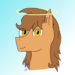 Size: 1080x1080 | Tagged: safe, artist:camellias, oc, oc only, oc:iolite, angel pony, original species, pony, amber eyes, angel, brown mane, ear fluff, eye clipping through hair, halo, head only, simple background, solo