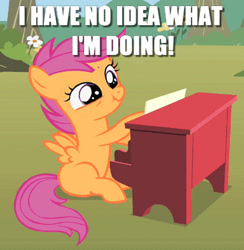 Size: 400x410 | Tagged: safe, edit, edited screencap, screencap, scootaloo, pegasus, pony, the show stoppers, caption, cropped, female, filly, i have no idea what i'm doing, image macro, musical instrument, piano, scrunchy face, solo, text