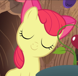 Size: 954x939 | Tagged: safe, screencap, apple bloom, on your marks, adorabloom, cropped, cute, eyes closed, proud, smiling, solo