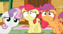 Size: 1667x902 | Tagged: safe, screencap, apple bloom, scootaloo, sweetie belle, earth pony, pegasus, pony, unicorn, on your marks, clubhouse, cropped, crusaders clubhouse, cutie mark crusaders, female, filly, floppy ears, looking at you, scared, shrunken pupils, solo