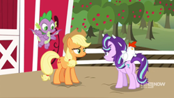 Size: 1600x900 | Tagged: safe, screencap, applejack, spike, starlight glimmer, bird, chicken, dragon, harvesting memories, spoiler:harvesting memories, spoiler:mlp friendship is forever, 9now, apple, apple tree, barn, farm, feather, fence, flying, frazzled, orchard, sweet apple acres, tree, winged spike
