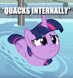 Size: 544x576 | Tagged: safe, edit, edited screencap, screencap, twilight sparkle, alicorn, duck, duck pony, pony, deep tissue memories, spoiler:deep tissue memories, behaving like a duck, c:, caption, cropped, cute, female, folded wings, image macro, lidded eyes, looking up, mare, meme, smiling, solo, swimming, text, twiabetes, twilight duckle, twilight sparkle (alicorn), water, wings, x internally