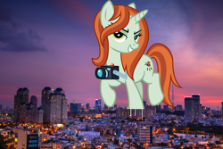 Size: 3799x2533 | Tagged: safe, artist:cheezedoodle96, artist:quang nguyen vinh, crackle cosette, queen chrysalis, pony, unicorn, camera, city, cityscape, disguised changeling, female, giant pony, giantess, highrise ponies, irl, macro, mega giant, photo, ponies in real life, sunset