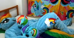 Size: 2048x1067 | Tagged: safe, artist:rogerdaily, rainbow dash, twilight sparkle, human, bed, clothes, cosplay, costume, fursuit, irl, irl human, photo, plushie, ponysuit