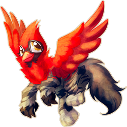 Size: 1024x1023 | Tagged: safe, artist:amura-of-jupiter, oc, oc only, bird, cardinal, cat, griffon, maine coon, beak, claws, commission, eyelashes, feather, female, female oc, flying, fur, golden eyes, griffon oc, looking up, raised leg, red fur, red wings, simple background, solo, spread wings, tail, transparent background, wings
