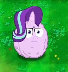 Size: 1202x1262 | Tagged: safe, starlight glimmer, original species, plant pony, unicorn, marks for effort, :i, big eyes, cute, female, females only, frown, grass, grass field, green background, horn, i mean i see, no tail, plant, plants vs zombies, simple background, solo, solo female, thinking, wall-nut, wat, wavy hair, wavy mane, wide eyes